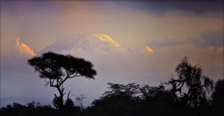 Фото Силуэты деревьев на фоне гор (© Флориссия), добавлено: 10.11.2011 16:25