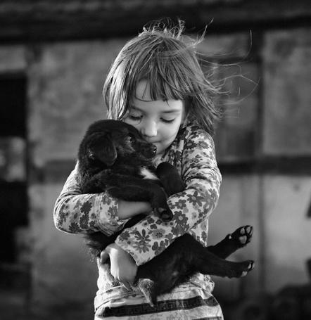Фото Девочка нежно прижимает маленького щенка (© Morena), добавлено: 11.11.2011 11:56