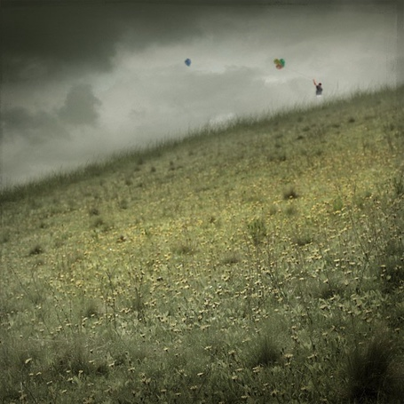 Фото Отпускаю в небо ( мужчина в поле с воздушными шариками )