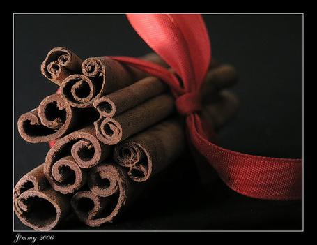 Фото Палочки корицы перевязанные красной лентой (Jimmy 2006) (© bad luck), добавлено: 20.11.2011 17:30