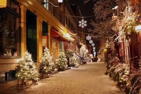 Фото Улица с украшенными ёлками и искусственными снежинками (© Штушка), добавлено: 24.11.2011 03:08