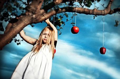 Фото Девочка с белокурыми волосами возле дерева на котором подвешены яблоки (© Флориссия), добавлено: 28.11.2011 12:51