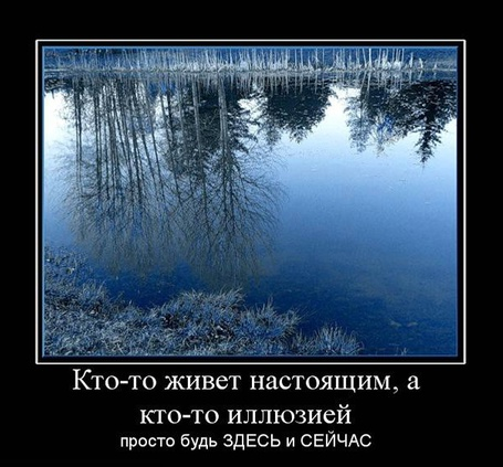 Фото Кто-то живёт настоящим, а кто-то иллюзией. Просто будь здесь и сейчас (© Флориссия), добавлено: 29.11.2011 13:58