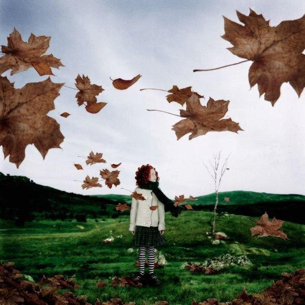 бюджетные картинки листья унесенные ветром судьбе артистки