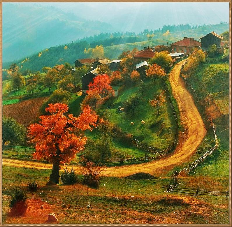Фото Осень в деревне