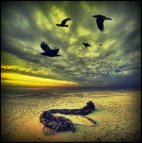 Фото Полёт ворон над заброшенным пляжем (© Флориссия), добавлено: 01.12.2011 14:15