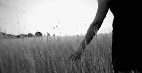 ���� ������� ������ �� ���� (� Krista Zarubin), ���������: 03.12.2011 20:10
