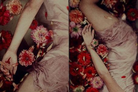 Фото Тело девушки в цветах (© bad luck), добавлено: 03.12.2011 21:46