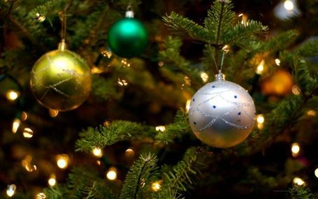 Фото Новогодние шары на елке (© Юки-тян), добавлено: 04.12.2011 15:48