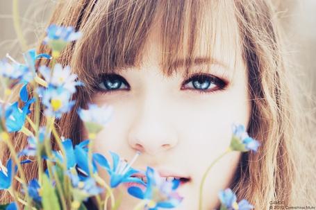 Фото Девушка с голубыми глазами возле голубых цветочков (© Юки-тян), добавлено: 05.12.2011 15:58