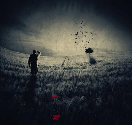 Фото Одинокий мужчина на поляне