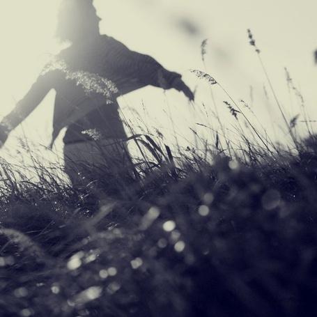 Фото Мужчина гуляет в поле (© Флориссия), добавлено: 06.12.2011 16:36