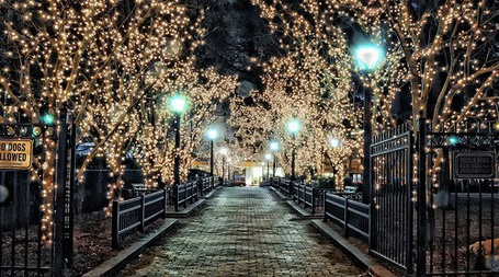 Фото Красивый парк с украшенными деревьями (© Штушка), добавлено: 08.12.2011 02:47