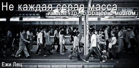 Фото Не каждая серая масса имеет что-то общее с мозгом Ежи Лец (© Anatol), добавлено: 10.12.2011 19:40
