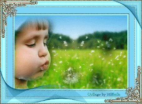 Фото Мальчик дует на одуванчик (© Флориссия), добавлено: 11.12.2011 12:45
