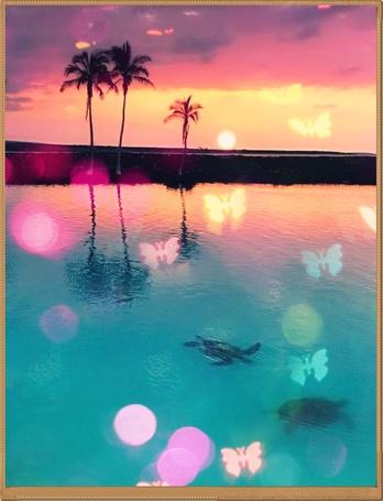 Фото Море, пальмы, плавающие подводные черепахи