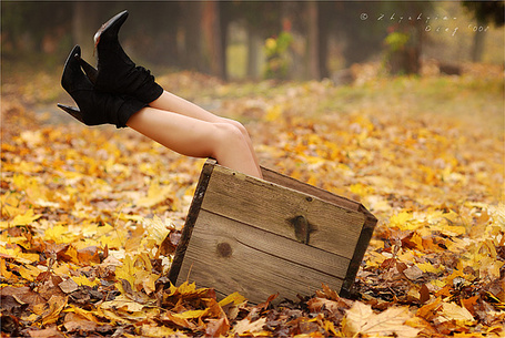 Фото Ноги торчат из деревянной коробки (© DashaV), добавлено: 25.12.2011 13:08