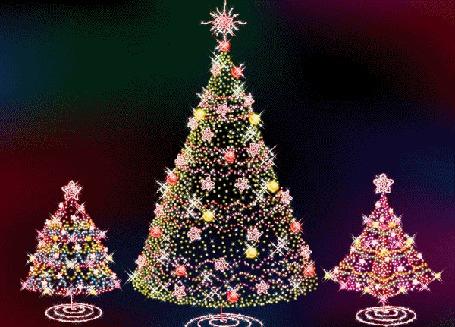 Фото Три елки светятся огнями и гирляндами в ожидании Нового года (© Morena), добавлено: 31.12.2011 09:22