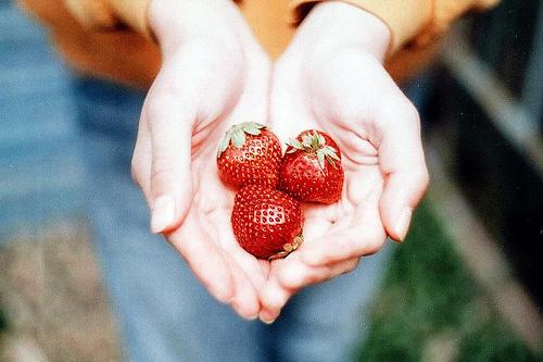 Фото Три ягоды клубники в ладонях