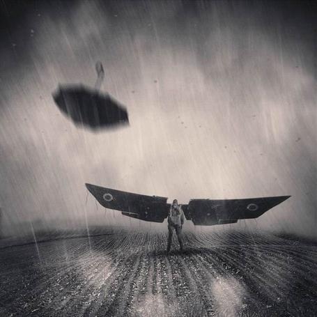 Фото Человек с деревянными крыльями в поле (© Флориссия), добавлено: 04.01.2012 14:35