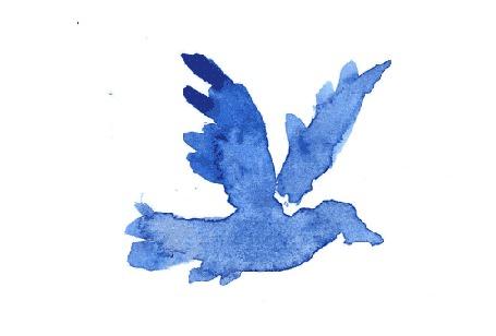 Фото Летящая синяя птица