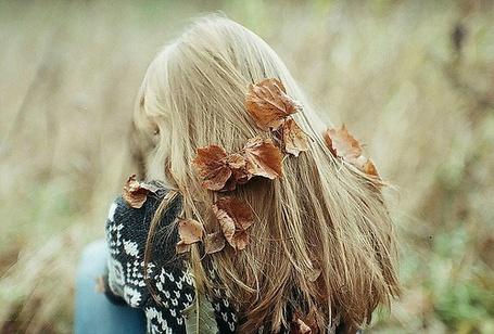 Фото Над ладошкой руки воображаемый лист и дерево с ...