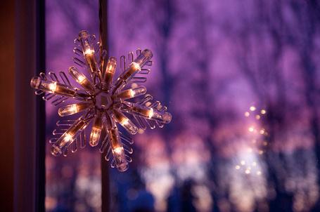 Фото Красивая звезда висит на окне (© Штушка), добавлено: 06.01.2012 15:31