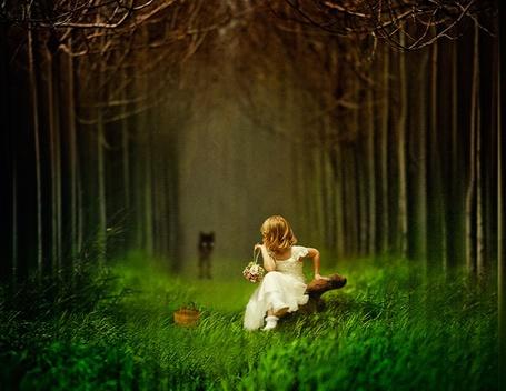 Фото Маленькая девочка в белом платье с лукошком, ждёт волка