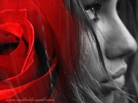 Фото Девушка с красном розой в волосах (© Штушка), добавлено: 08.01.2012 19:12