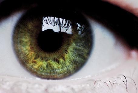 Фото Зеленый глаз девушки