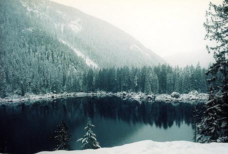 Фото Заснеженные холмы гор, окутанные зелёными елями, посреди небольшого озера (© lemon), добавлено: 09.01.2012 18:08