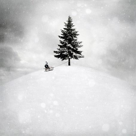 Фото Мальчик на санках (© Julia_57), добавлено: 15.01.2012 17:34