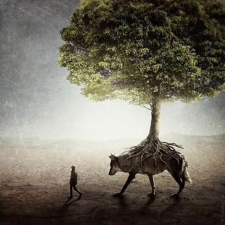 Фото У волка на спине дерево, а рядом с ним идет человек (© Julia_57), добавлено: 16.01.2012 16:11