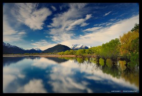 Фото ' Красивое озеро с растущими деревьями в воде' Работы фотографа Anthony который из Окленда, Новая Зеландия (© Штушка), добавлено: 21.01.2012 20:10