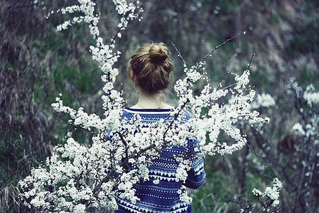 Фото Девушка в свитере стоит у цветущего дерева (© Радистка Кэт), добавлено: 23.01.2012 23:43