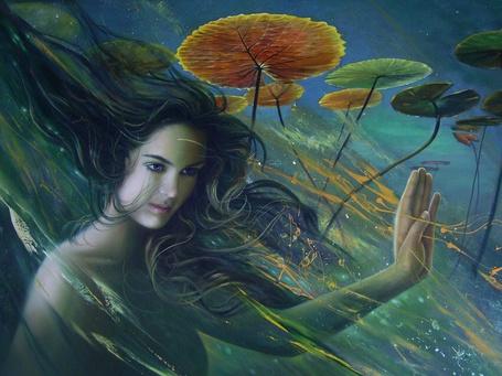 Фото Девушка под водой среди растений (© Anatol), добавлено: 28.01.2012 02:20