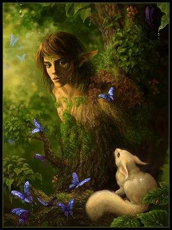 Фото Эльф в лесу, вокруг бабочки и белка