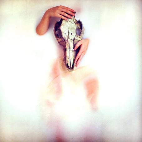 Фото Руки и череп животного (Sarah Ann Loreth ) (© Radieschen), добавлено: 30.01.2012 21:32