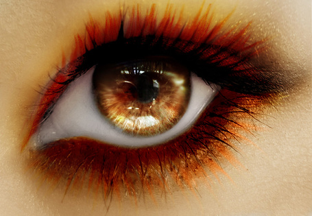 Фото Красивый оранжевый глаз (© Rainy), добавлено: 01.02.2012 18:37