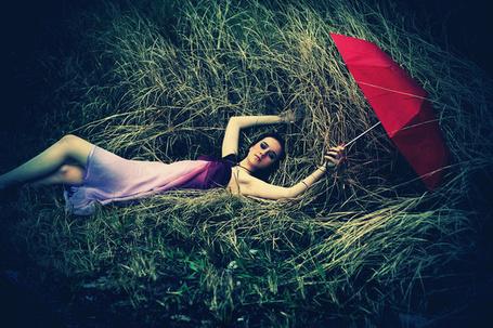 Фото Девушка с красным зонтом лежит в высокой траве (© TARAKLIA), добавлено: 06.02.2012 02:19