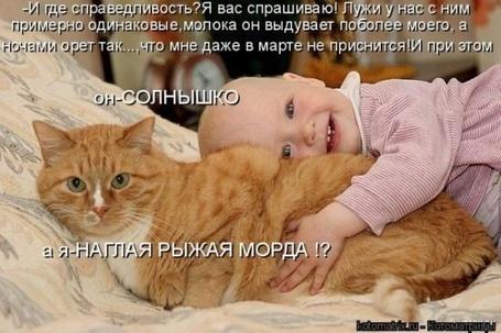 Фото Ребенок спит на рыжем коте (И где справедливость? Я вас спрашиваю! Лужи у нас с ним примерно одинаковые, молока он выдувает поболее моего, а ночами орет так..., что мне даже в марте не приснится! При этом Он - солнышко, а я -наглая рыжая морда?!)