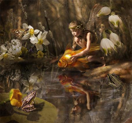 Фото Фея выпускает золотую рыбку в родную стихию, художник Кулененок Лилия