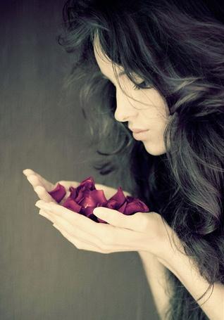 Фото Девушка с лепестками роз в руках (© Rainy), добавлено: 09.02.2012 18:13