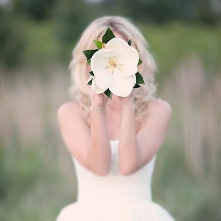 Фото Блондинка в белом платье прикрыла лицо белым цветком (© Радистка Кэт), добавлено: 13.02.2012 13:58