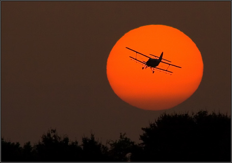 Фото Самолёт-биплан улетает в закат (© BRODJaGA), добавлено: 18.02.2012 12:06