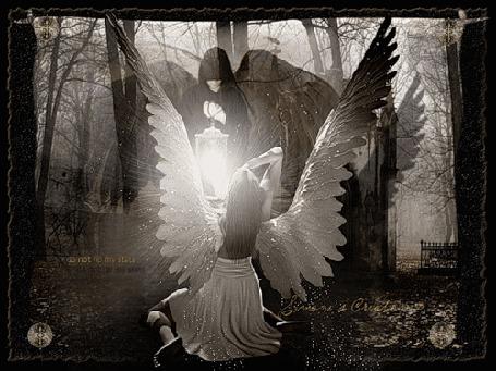 Фото Черный ангел с фонарем, и белый ангел у его ног