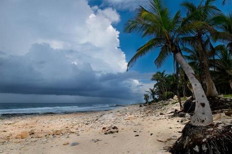 Фото Поднимающийся шторм на острове (© Штушка), добавлено: 19.02.2012 23:23