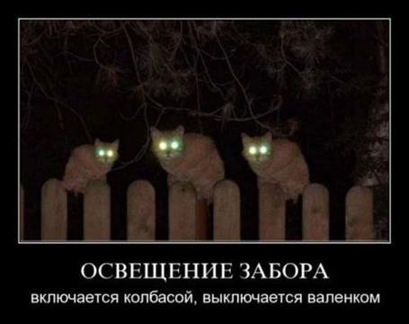 Фото Освещение забора. Включается колбасой, выключается валенком (© Штушка), добавлено: 20.02.2012 17:46