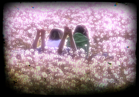 Фото Две девочки лежат на цветочной поляне