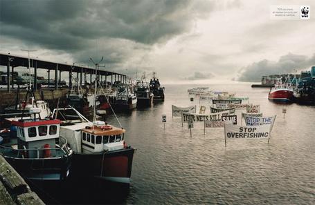 ���� ��������� ������������ ����� �������, ������ � �������� ���� (Stop overfishing, Your nets kill, save) (� Radieschen), ���������: 25.02.2012 11:03